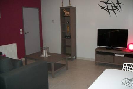2 pièces 51 m2 centre Avignon - Avignon - Apartment