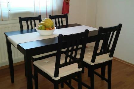 Family-friendly apartment in Bihac - Bihać - Lägenhet