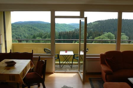 Hiking, sledding, skiing in Harz - Apartamento