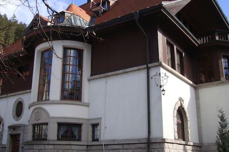 Jugendstilvilla im Schwarzwald - Sankt Blasien - Villa
