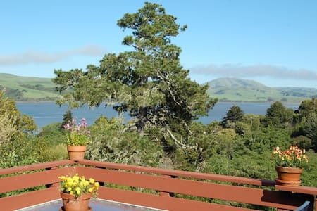 Captain's Cabin - Tomales Bay views - Casa