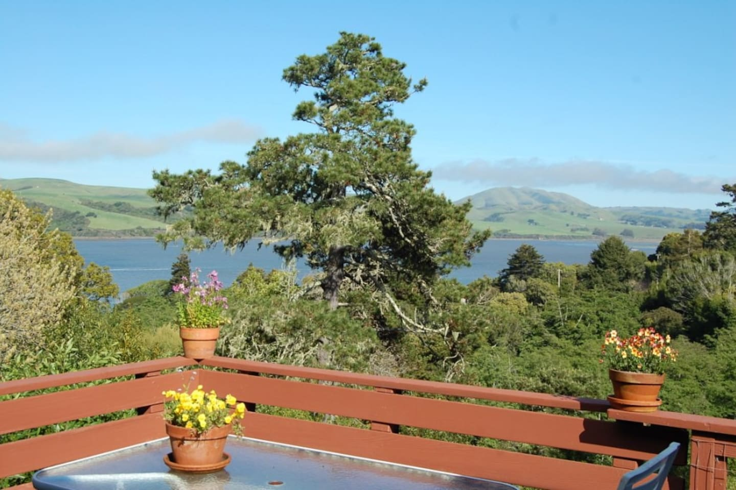 The view off the porch, looking south/east across the Tomales bay