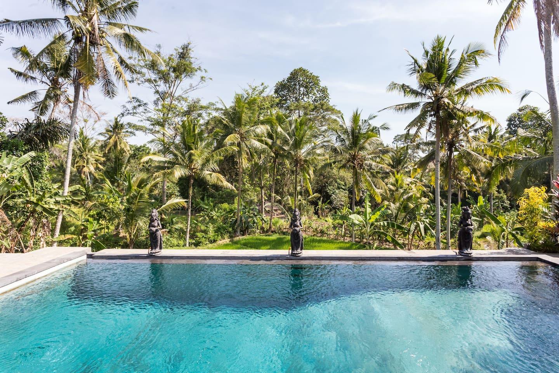 The Ark - Gardenia Apt, Ubud,Bali