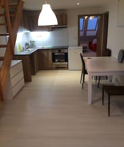 Apartmán Udolní B - Brünn - Wohnung