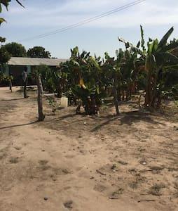 Brikama-a unique African experience - Brikama - Hut