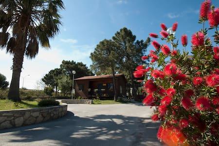 Sea Villa Nocera Terinese Calabria - Villa
