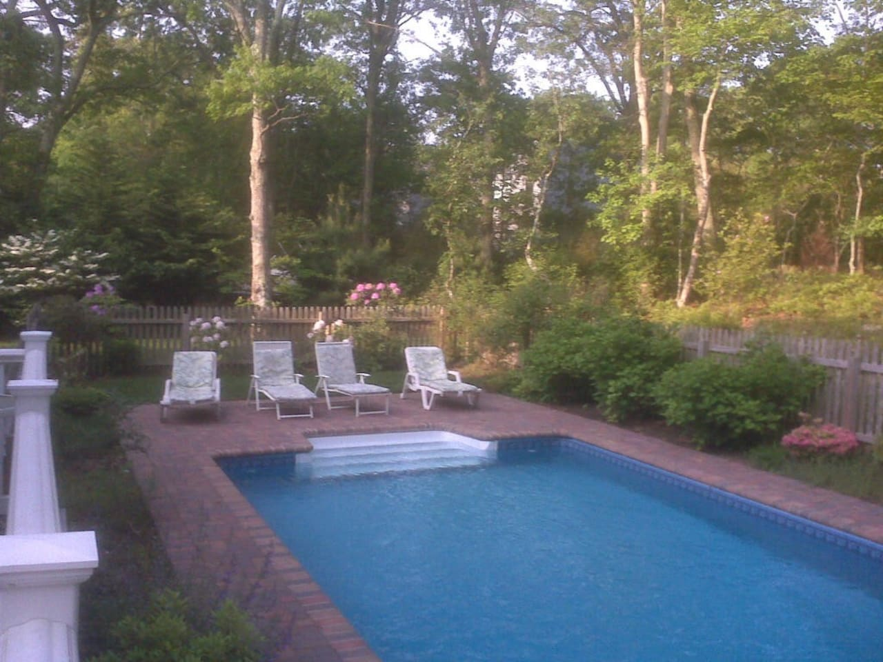 Summmer pool surrounded by gardens, state of the art solar heated pool in the woods./