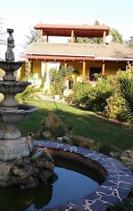 Sardegna elegante villa con piscina - Mores - Villa