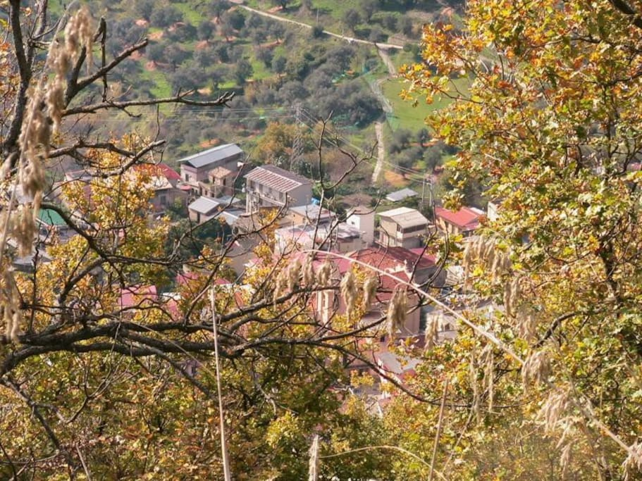 Santo Stefano di Aspromonte - Spring is coming