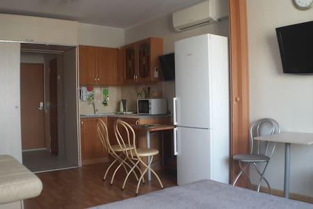 Comfortable apartment! - Krasnogorsk