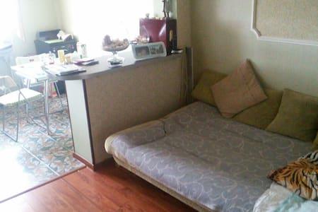 Уютная квартира - VNIISSOK