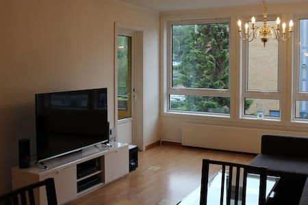 Cozy apartment close to city center - Bergen - Apartment