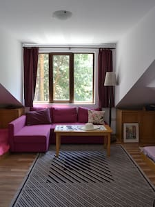 Charming studio loft, with a view - Velingrad - Loft