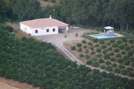 Casa Rural Alameda en Posadas Córdoba - Xalet