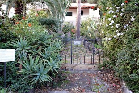 The Casa degli Ulivi - Hus