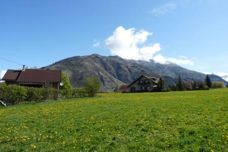 Terrific 35sqm Studio in the Alpes  - Daire
