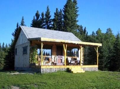 The Exquisite 'Fiddlehead Cabin' - Erickson - Kabin