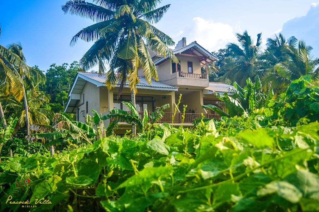 Villa View from the vegetable gardens