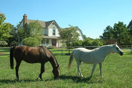 Waterfront Horse Farm Estate(working fireplace ) - McDaniel - Haus