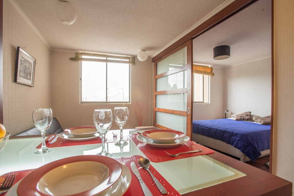 Confortable apartment in Bellas Artes