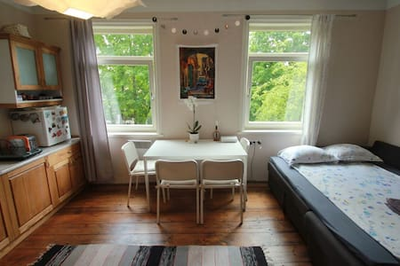 Sunny Central Studio - Apartment