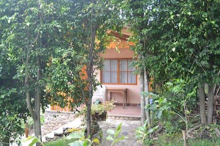 Apt. Studio Bungalow in Garden - B3 - Panajachel - Cabin