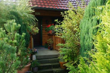 Nice Room in Bad Schandau - Bad Schandau - House