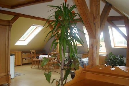 Dachstudio: idyllisch & citynah - Casa