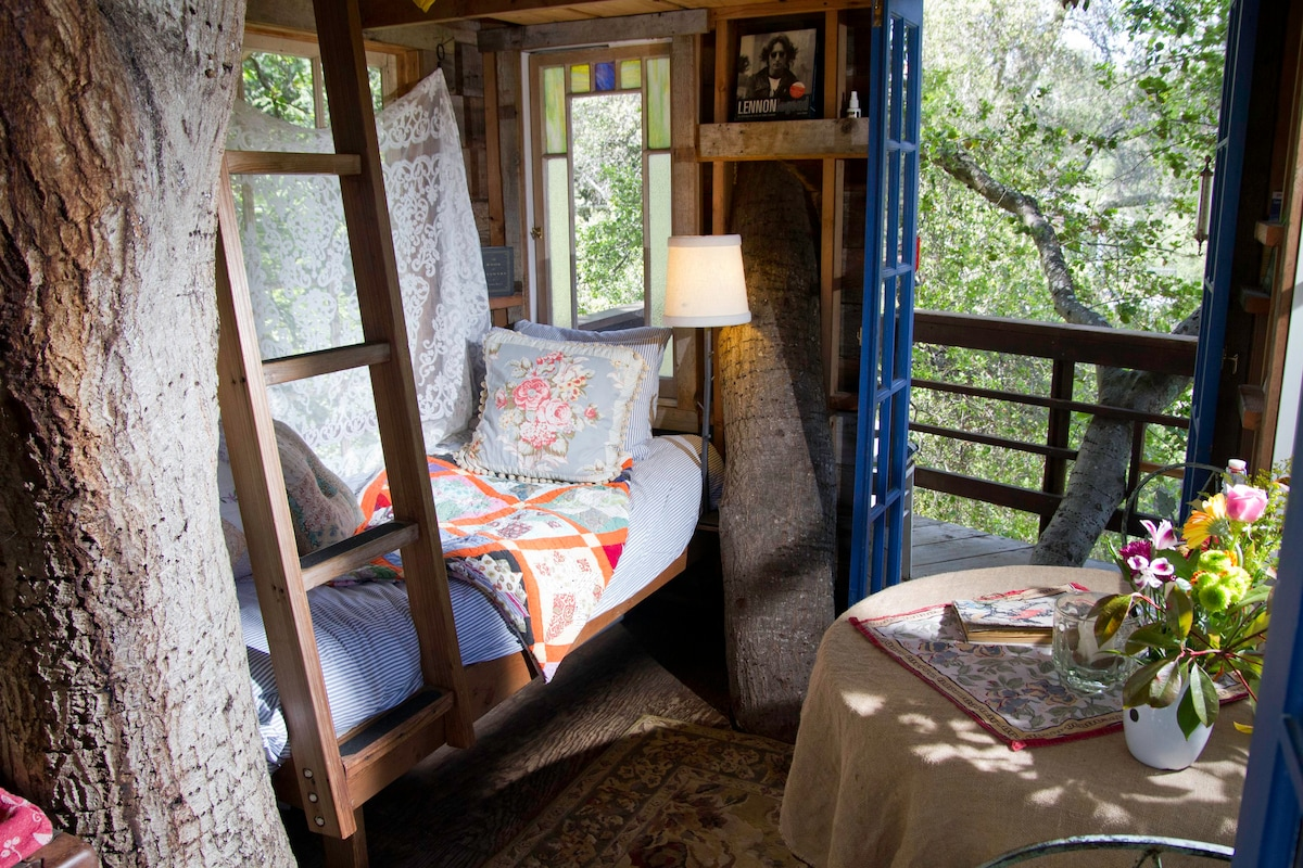 Magical Tree House, Airbnb Rent a Tree Hut for a Night Located in San Francisco, California