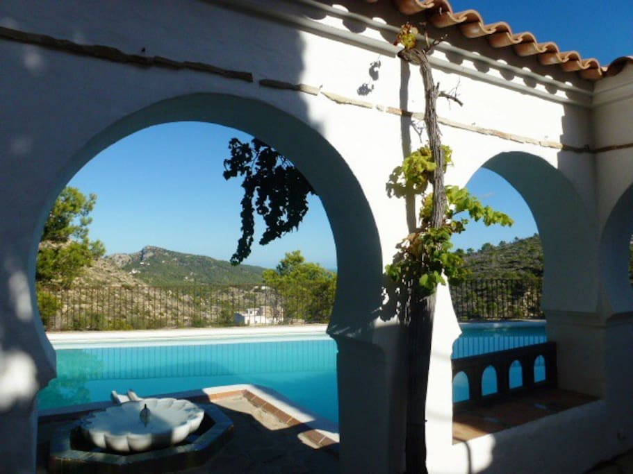 The swimming pool from the patio
