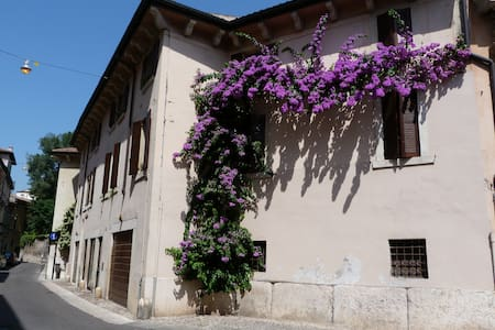 The House of Bougainville - Appartement