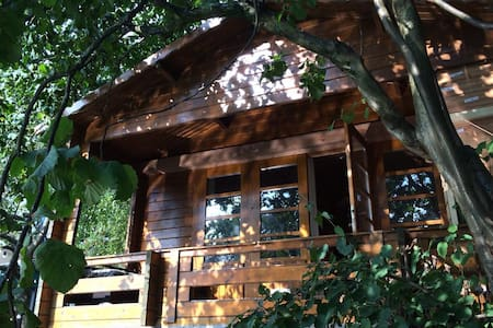 Private wooden cabin 'de Melkbus'