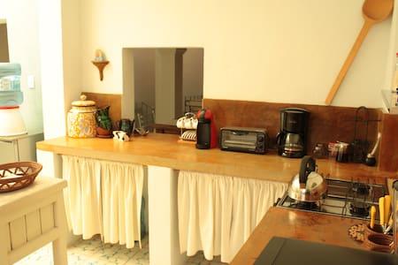Suite Tenerias in the middle of all - San Miguel de Allende - Wohnung