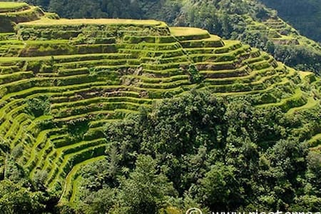 Your Home Away from home in Banaue - Aamiaismajoitus
