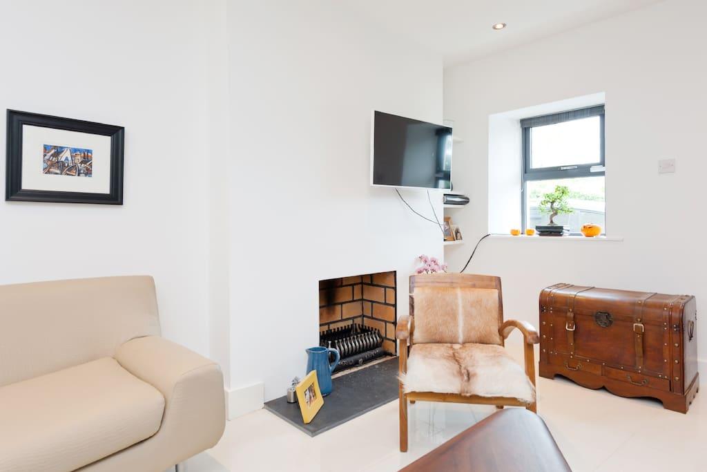 Fireplace & sky tv