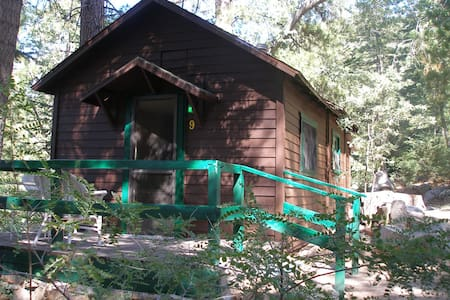 Cabin #9  For Two Guests - Angelus Oaks - Srub