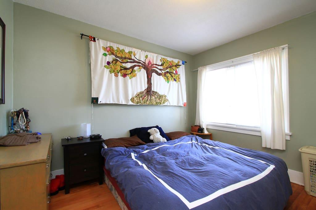 Master Bedroom  (1 of 3)
