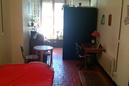 Studio Lyonnais au cœur de Vaise - Lyon - Lejlighed