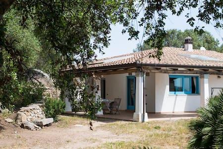 Casa spaziosa con ampio giardino - Santa Teresa di Gallura
