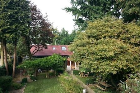 Vakantiewoning - Brouwershûs Doorn - Doorn - Blockhütte