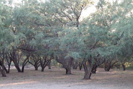 Beautiful Mesquite Bosque Getaway - Chalet