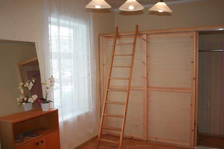 Spacious apartment in the centre - Tartu - Apartment