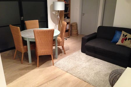 Appartement Place du Corbeau Centre - Strasbourg