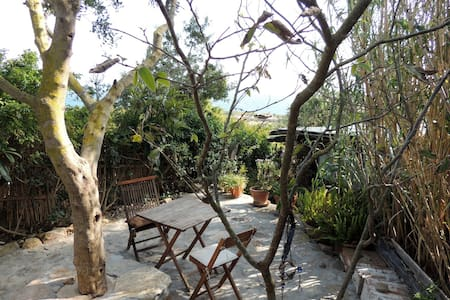 Casa Punta Paloma  .  Loft rústico - Tarifa