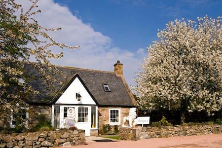 Fantastic location on Royal Deeside - Bed & Breakfast