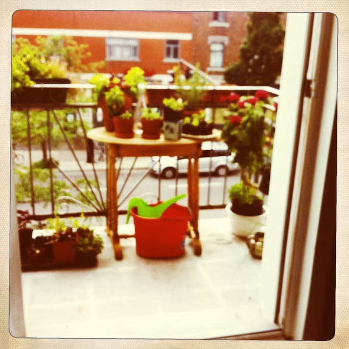 le balcon avant ! the front balcony, always sunny