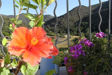 Great house in small paradise! - Pézilla-de-Conflent