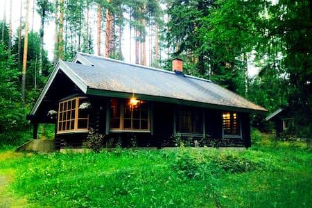 Уютный финский дом у подножия горы - House