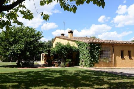 La Camota: charming rustic house - Casa