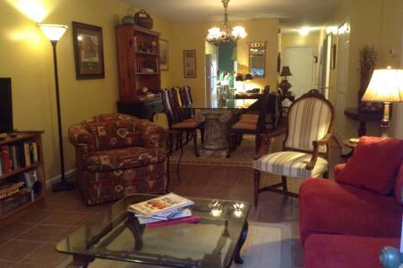 Convenient locale/petfriendly/comfy - Aiken - Condominium